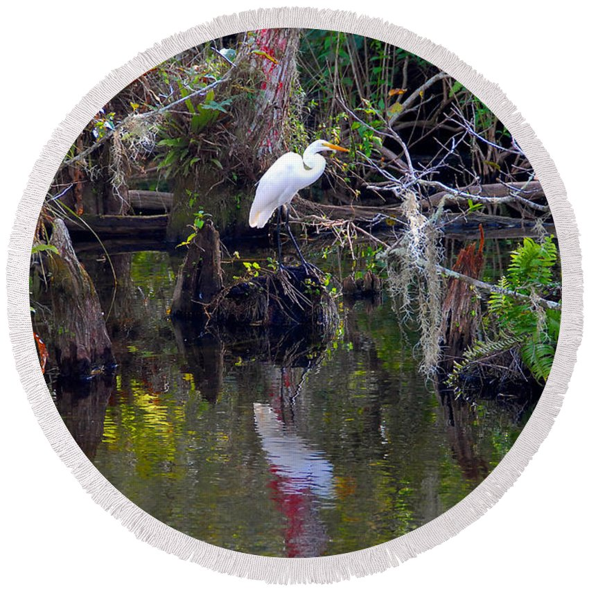 Everglades National Park Florida Round Beach Towel featuring the photograph An Egrets World by David Lee Thompson