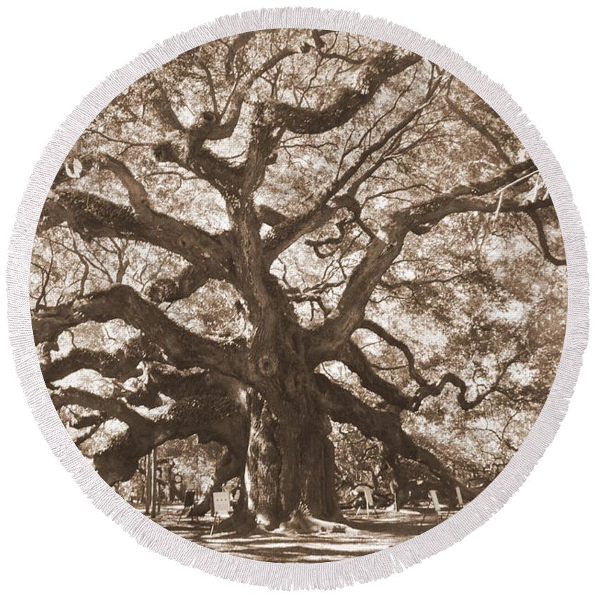 Angel Oak Round Beach Towel featuring the photograph Angel Oak Sepia by Lisa Wooten