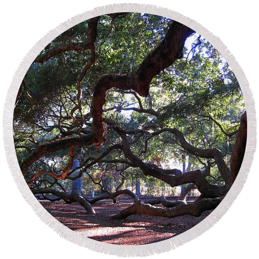 Photography Round Beach Towel featuring the photograph Angel Oak Side View by Susanne Van Hulst