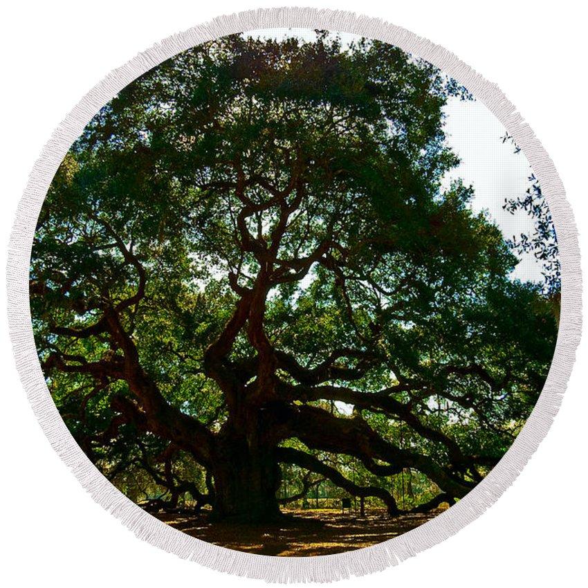 Tree Round Beach Towel featuring the photograph Angel Oak Tree 2004 by Louis Dallara