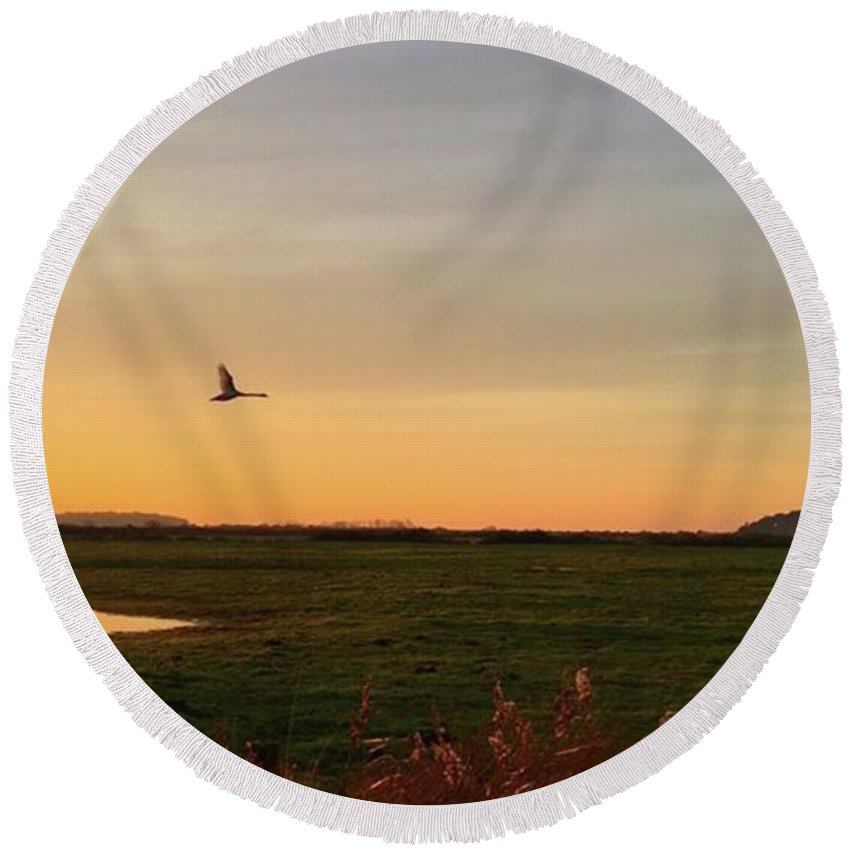 Natureonly Round Beach Towel featuring the photograph Another Iphone Shot Of The Swan Flying by John Edwards
