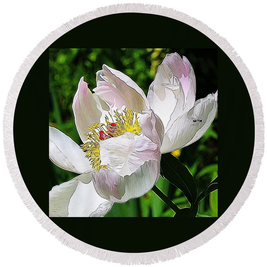 Nature Round Beach Towel featuring the photograph Ant On Peony by Modern Art