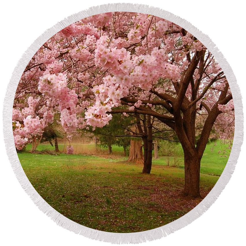 Cherry Blossoms Round Beach Towel featuring the photograph Approach Me - Holmdel Park by Angie Tirado