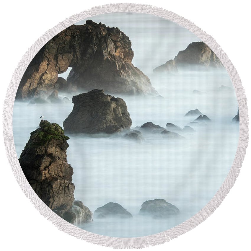 Arched Rock Round Beach Towel featuring the photograph Arched Rock Sea Bird by Travis Elder