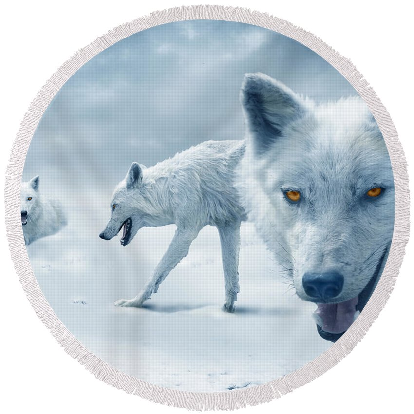Arctic Round Beach Towel featuring the photograph Arctic Wolves by Mal Bray