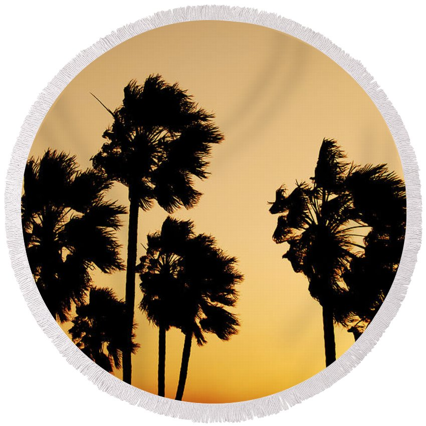 Arizona Round Beach Towel featuring the photograph Arizona Dust Storm by Jill Reger