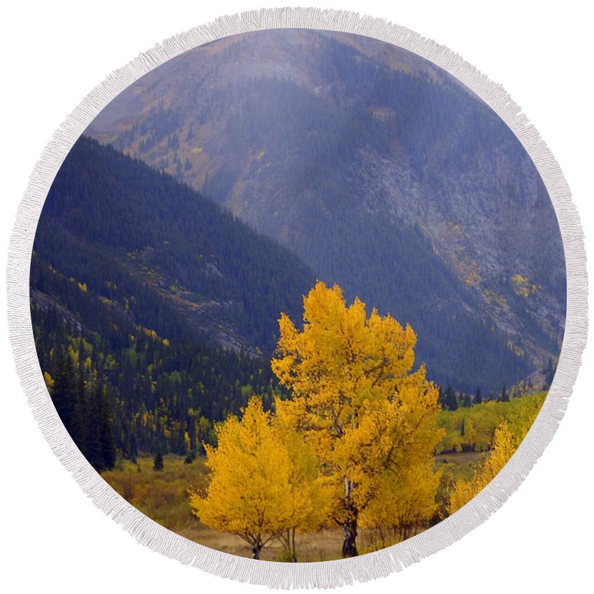 Fall Colors Round Beach Towel featuring the photograph Aspen Fall 4 by Marty Koch