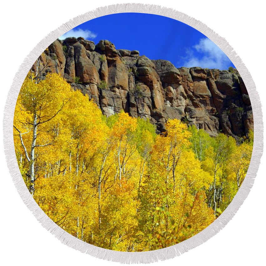 Fall Colors Round Beach Towel featuring the photograph Aspen Glory by Marty Koch