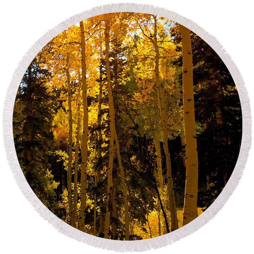 Aspen Trees Round Beach Towel featuring the painting Aspens In Fall by David Lee Thompson
