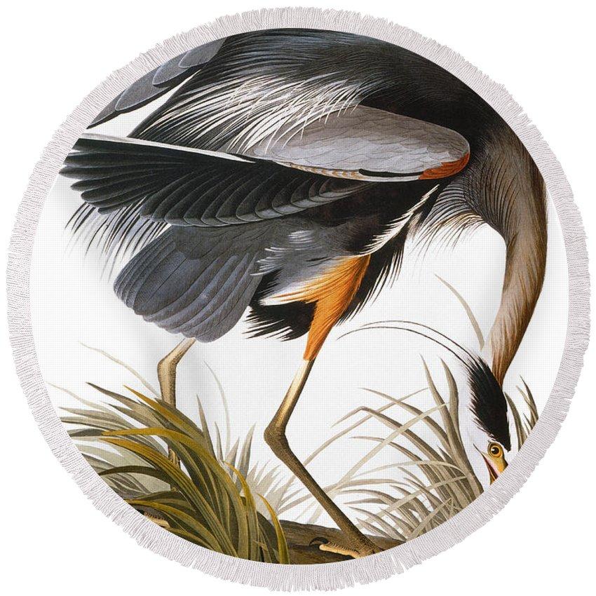 1838 Round Beach Towel featuring the photograph Audubon Heron by John James Audubon