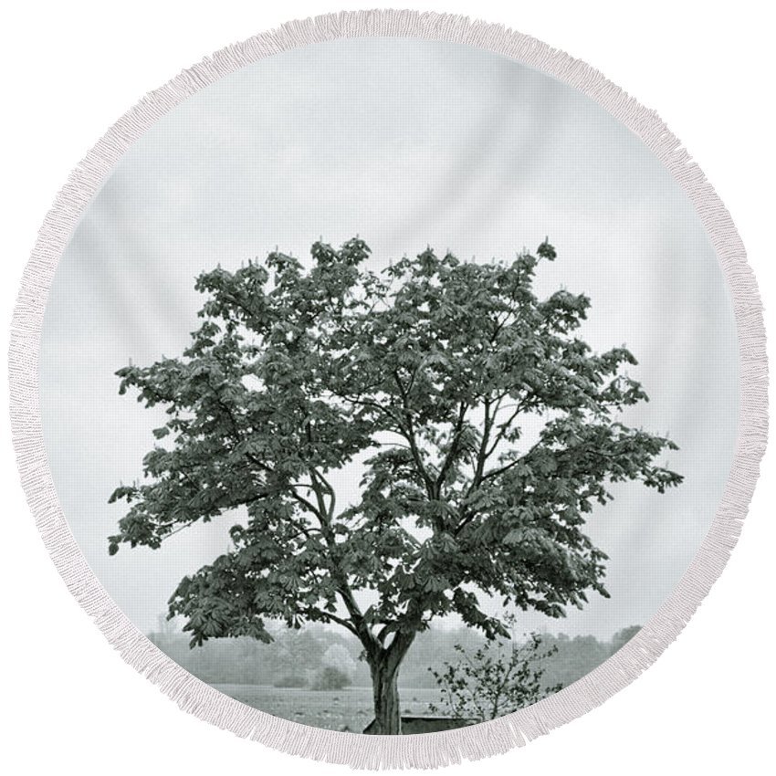 Tree Round Beach Towel featuring the photograph August In England by Andy Smy