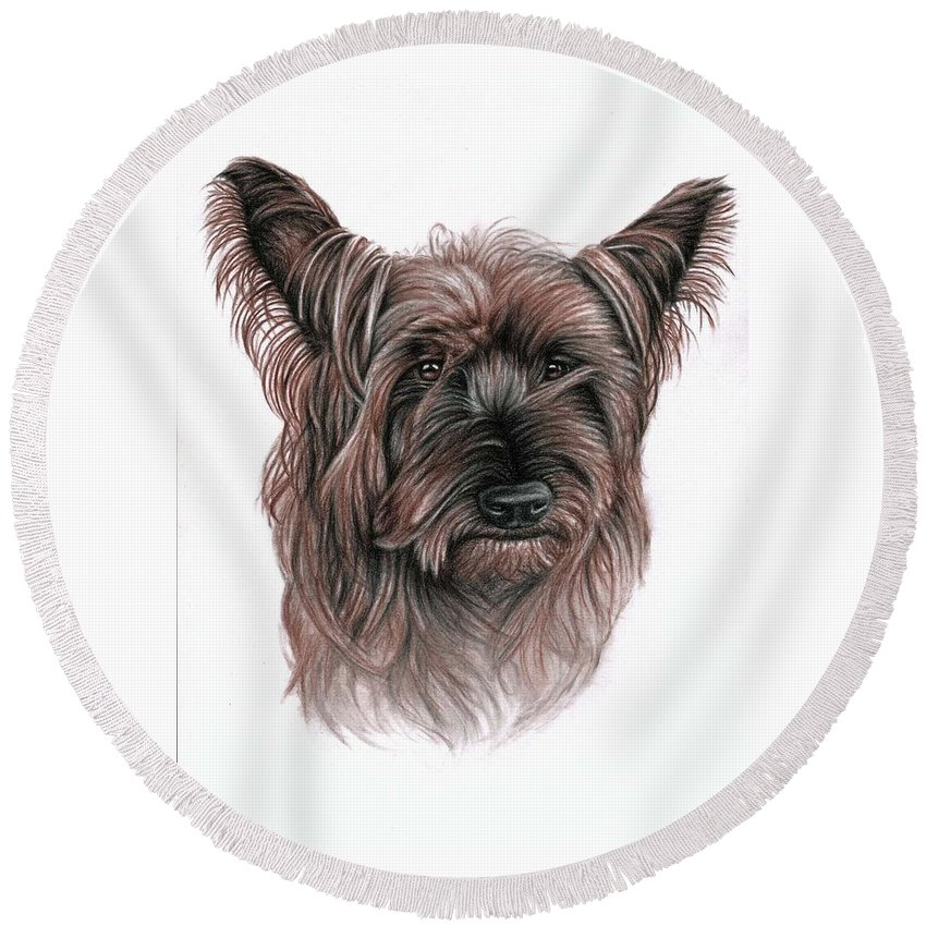 Dog Round Beach Towel featuring the drawing Australian Terrier by Nicole Zeug