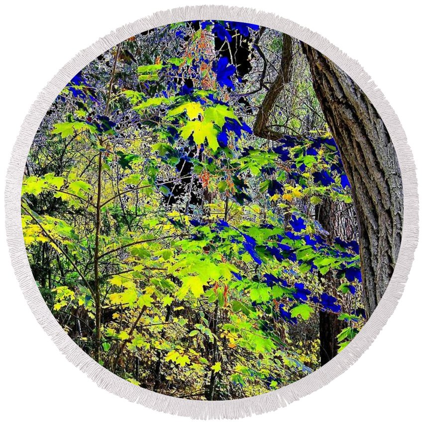 Surreal Round Beach Towel featuring the photograph Autumn Blue by Will Borden