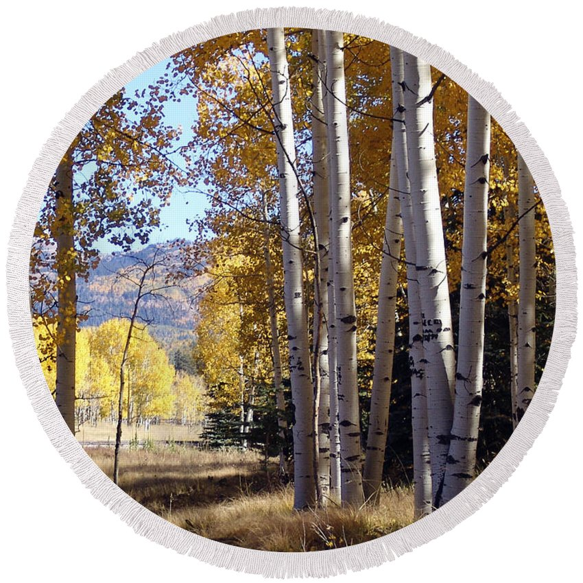 Autumn Round Beach Towel featuring the photograph Autumn Chama New Mexico by Kurt Van Wagner