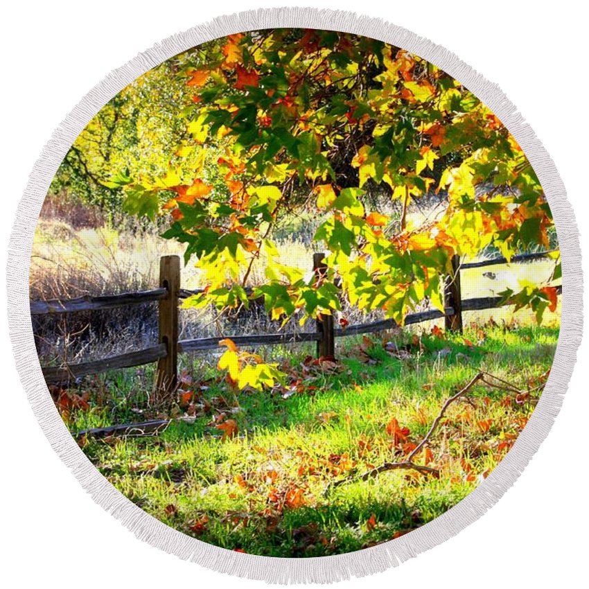 Fences Round Beach Towel featuring the photograph Autumn Fence by Carol Groenen