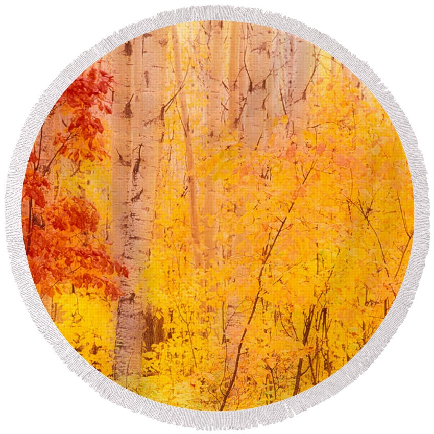Photography Round Beach Towel featuring the photograph Autumn Forest Wbirch Trees Canada by Panoramic Images