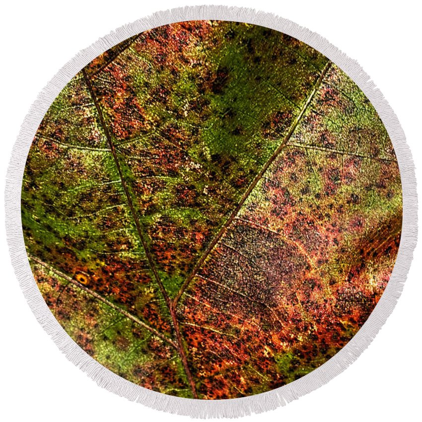 Pictorial Round Beach Towel featuring the photograph Autumn Leaf Detail by Roger Passman