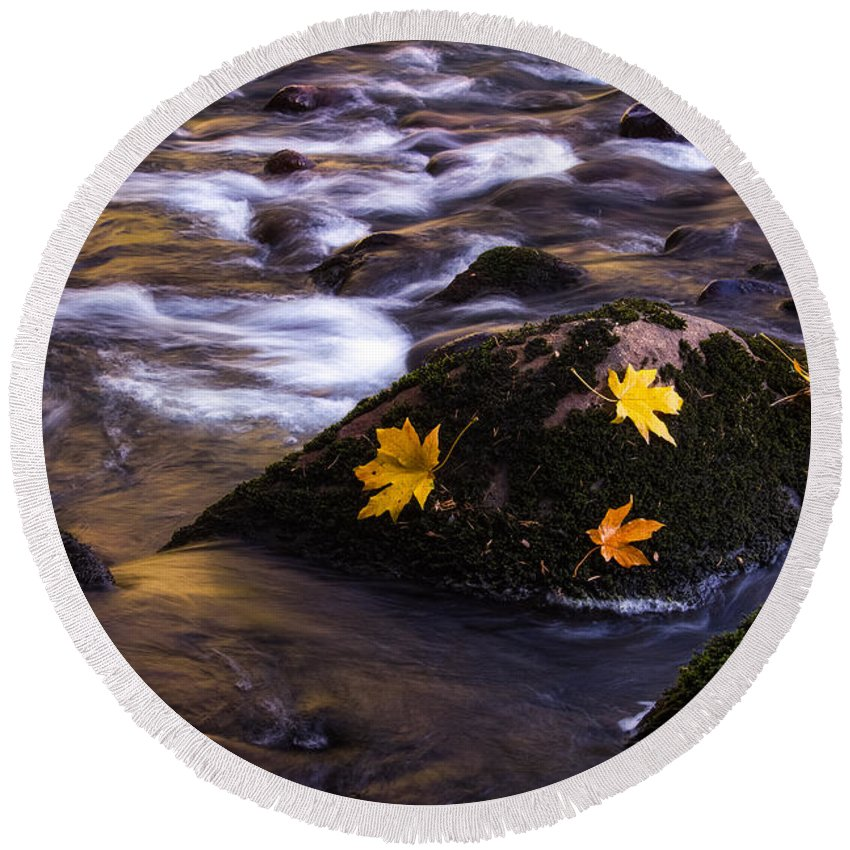 Yosemite Round Beach Towel featuring the painting Autumn Leaves by Anthony Michael Bonafede