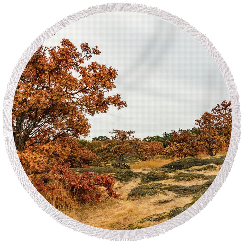 Landscapes Round Beach Towel featuring the photograph Autumn Oaks 3 by Claude Dalley