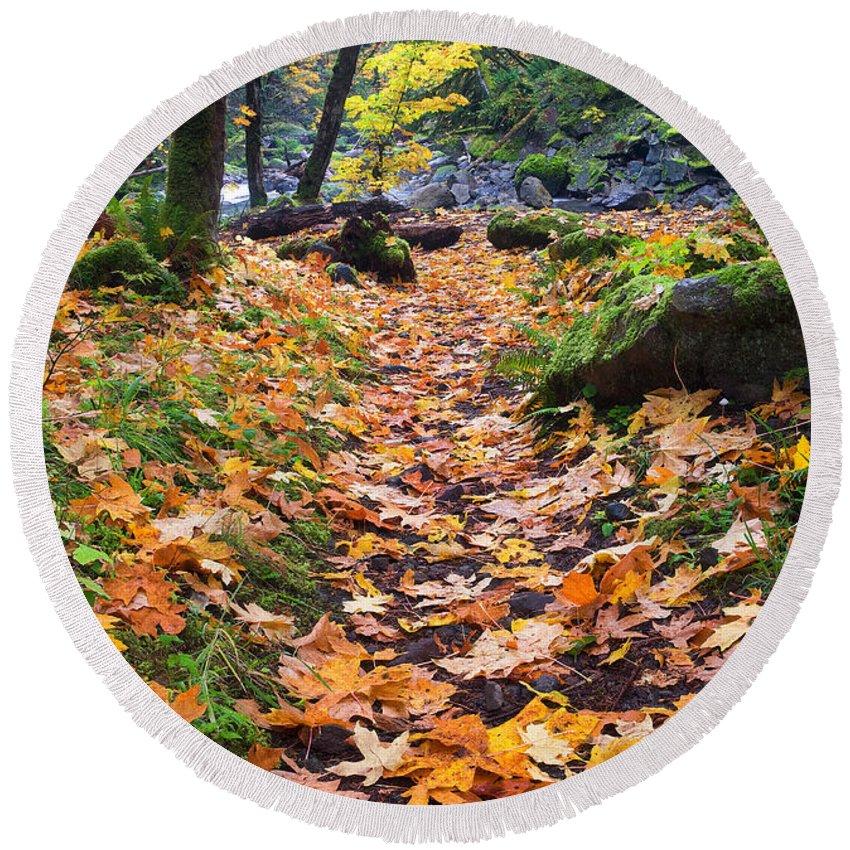 Path Round Beach Towel featuring the photograph Autumn Path by Mike Dawson