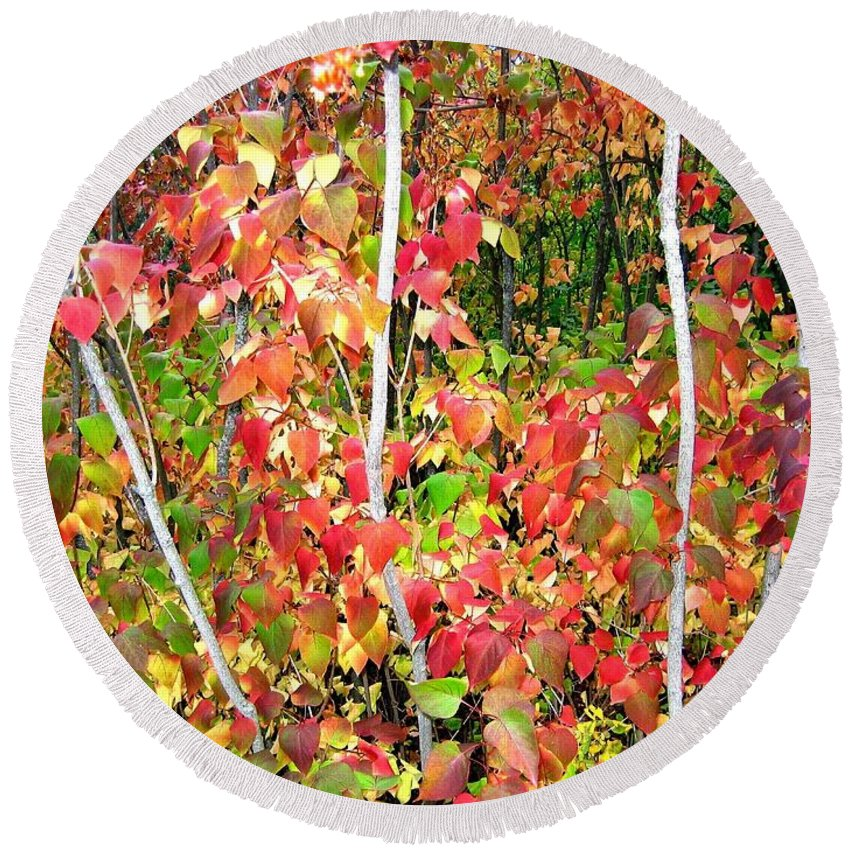 Autumn Round Beach Towel featuring the photograph Autumn Sanctuary by Will Borden