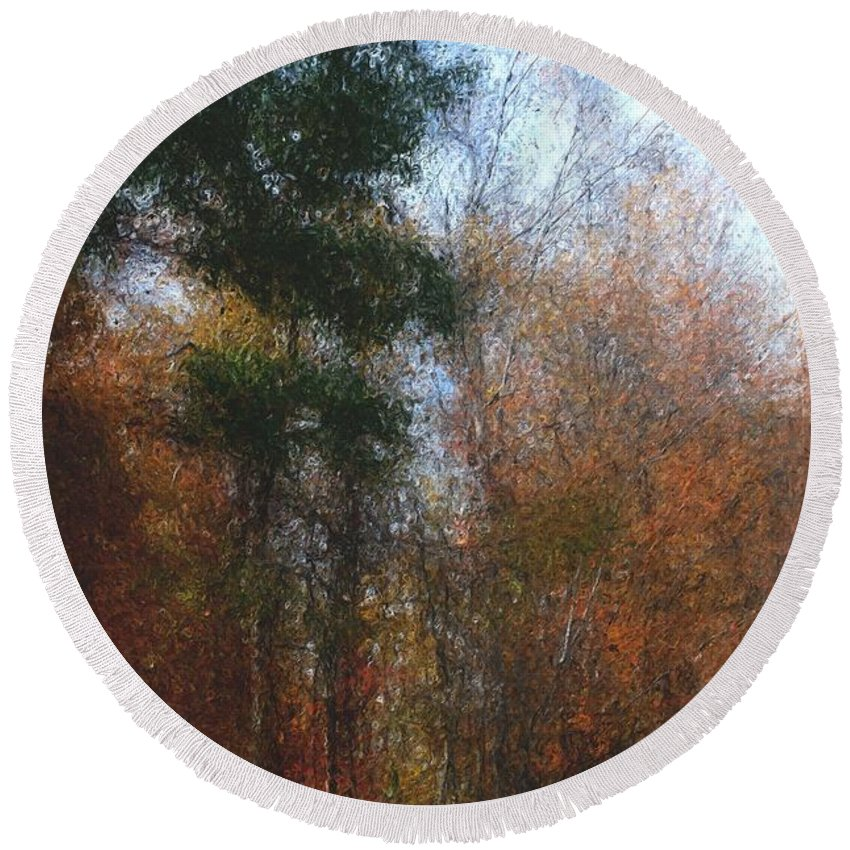 Nature Round Beach Towel featuring the photograph Autumn Scene 10-23-09 by David Lane