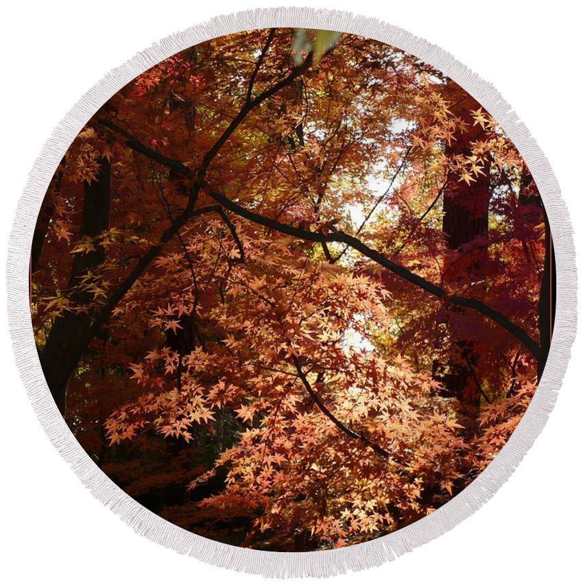 Spokane Round Beach Towel featuring the photograph Autumn Sunshine Poster by Carol Groenen