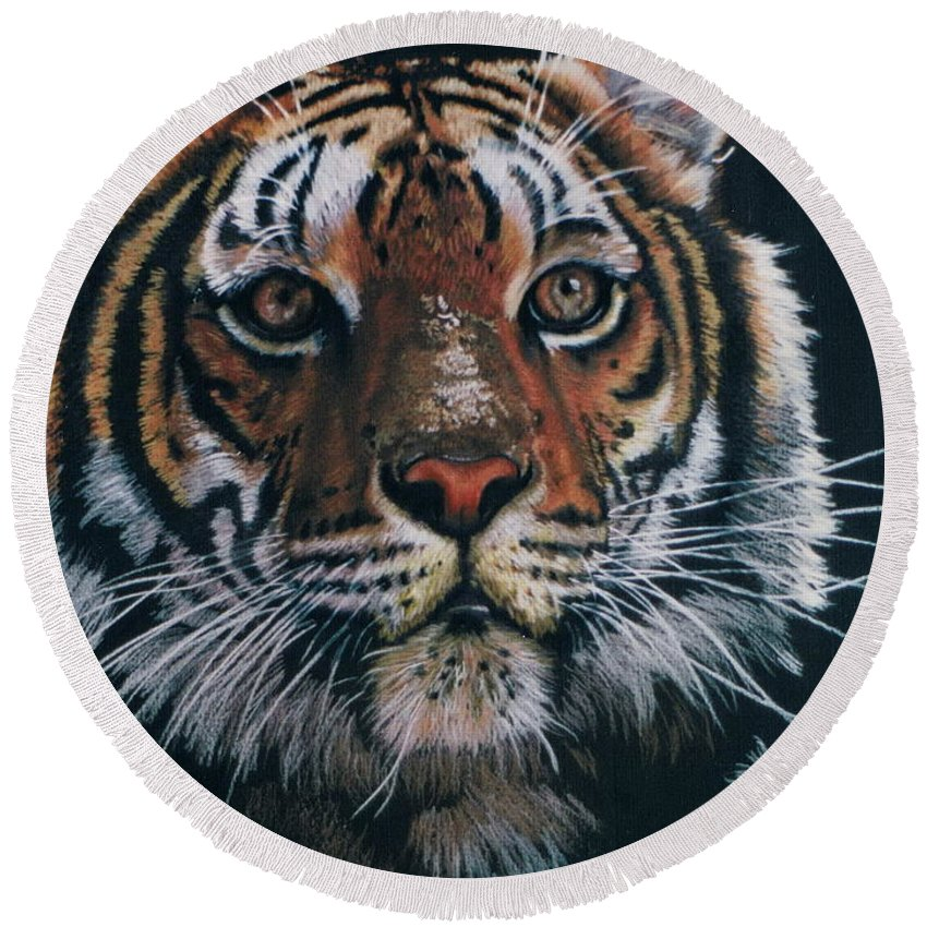 Tiger Round Beach Towel featuring the drawing Backlit Tiger by Barbara Keith