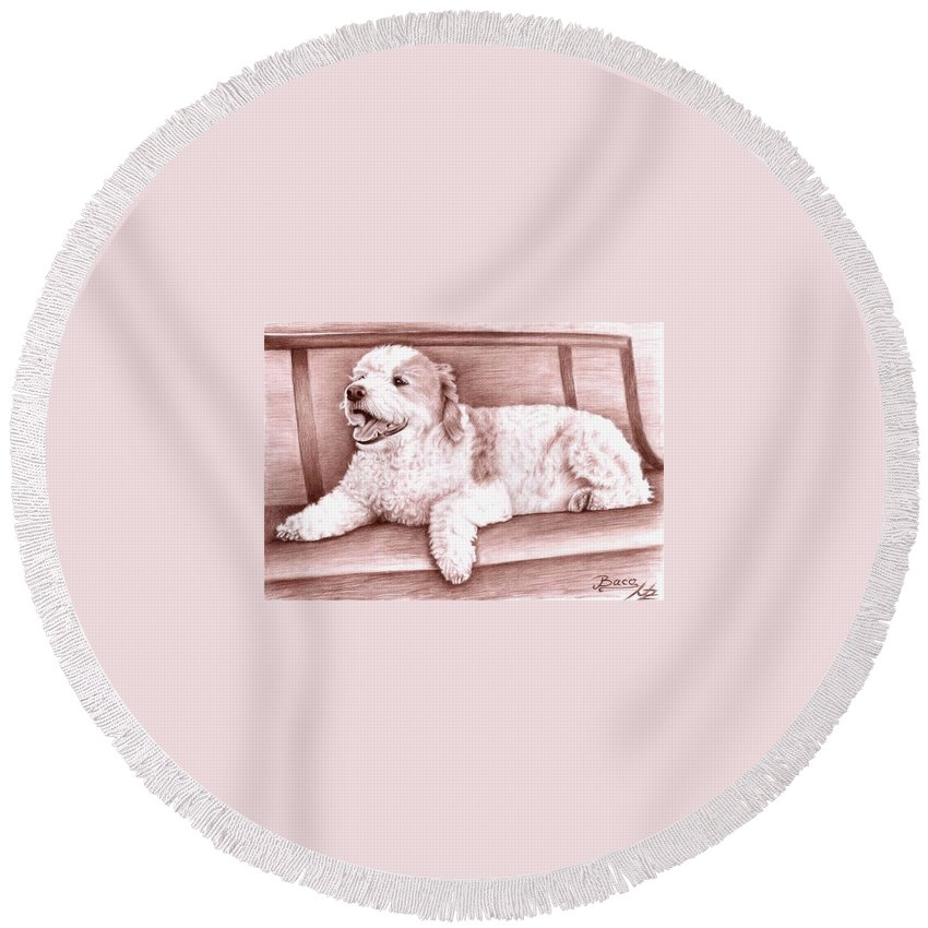 Dog Round Beach Towel featuring the drawing Baco by Nicole Zeug