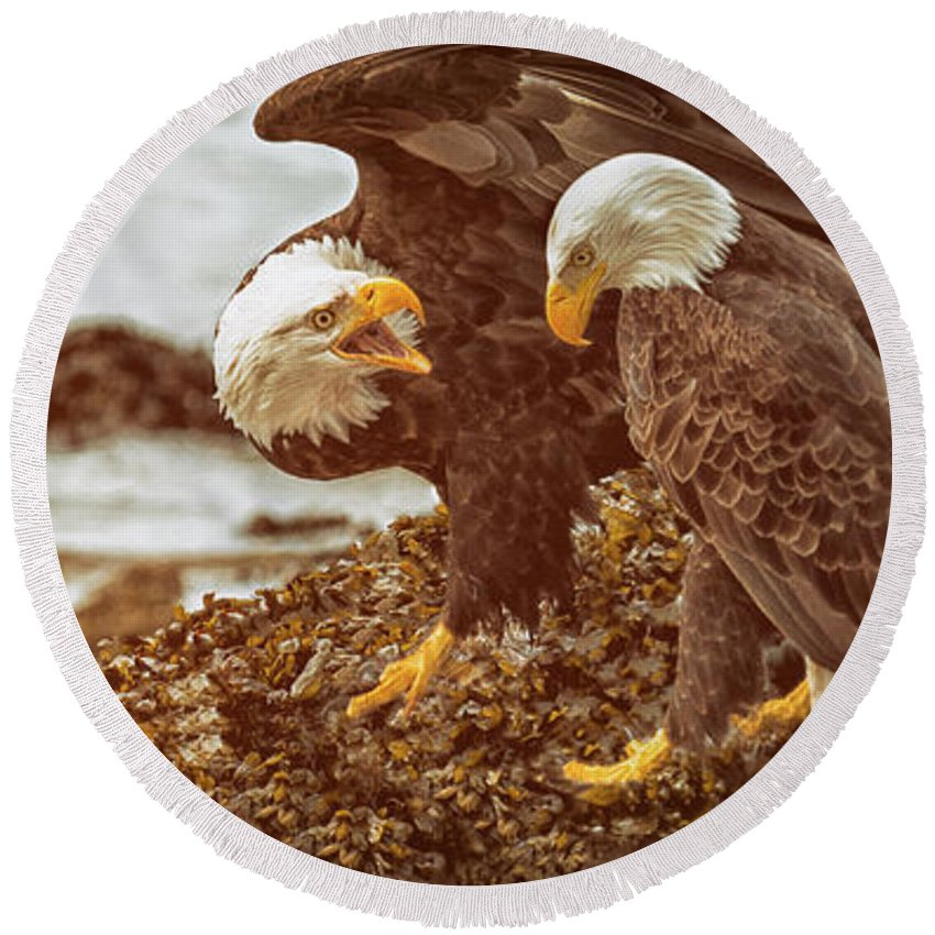 Bald Eagles Round Beach Towel featuring the photograph Bald Eagles Family Discussion by Max Rose