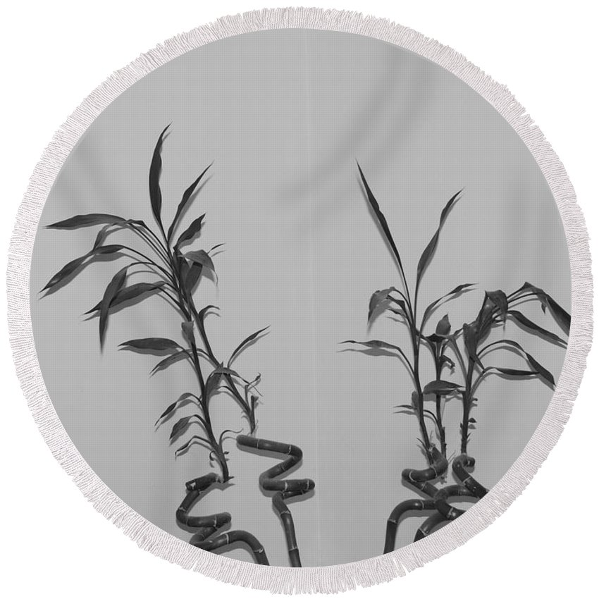Black And White Round Beach Towel featuring the photograph Bamboo Shutes by Rob Hans