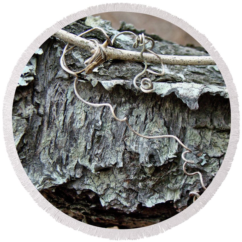 Tree Round Beach Towel featuring the photograph Bark - Lichen - Cat Brier Tendrils by Mother Nature