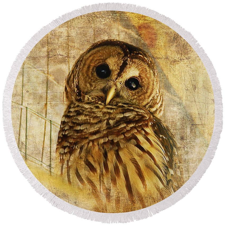 Owl Round Beach Towel featuring the photograph Barred Owl by Lois Bryan