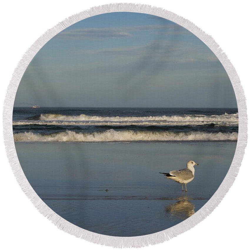Sea Ocean Gull Bird Beach Reflection Water Wave Sky Round Beach Towel featuring the photograph Beach Patrol by Andrei Shliakhau