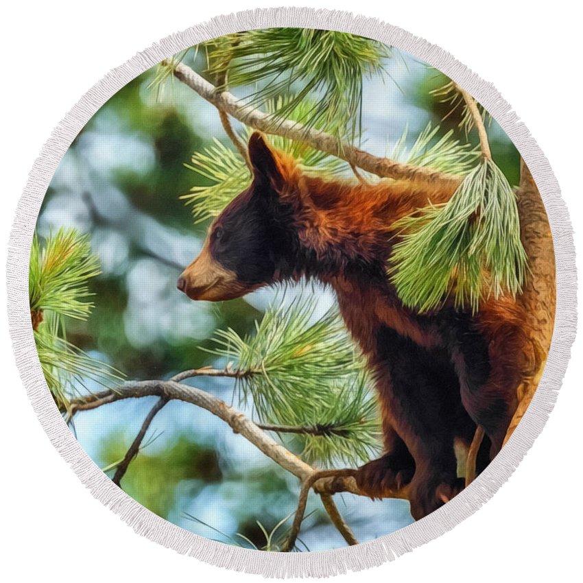 Bears Round Beach Towel featuring the digital art Bear Cub In A Tree 3 by Ernie Echols