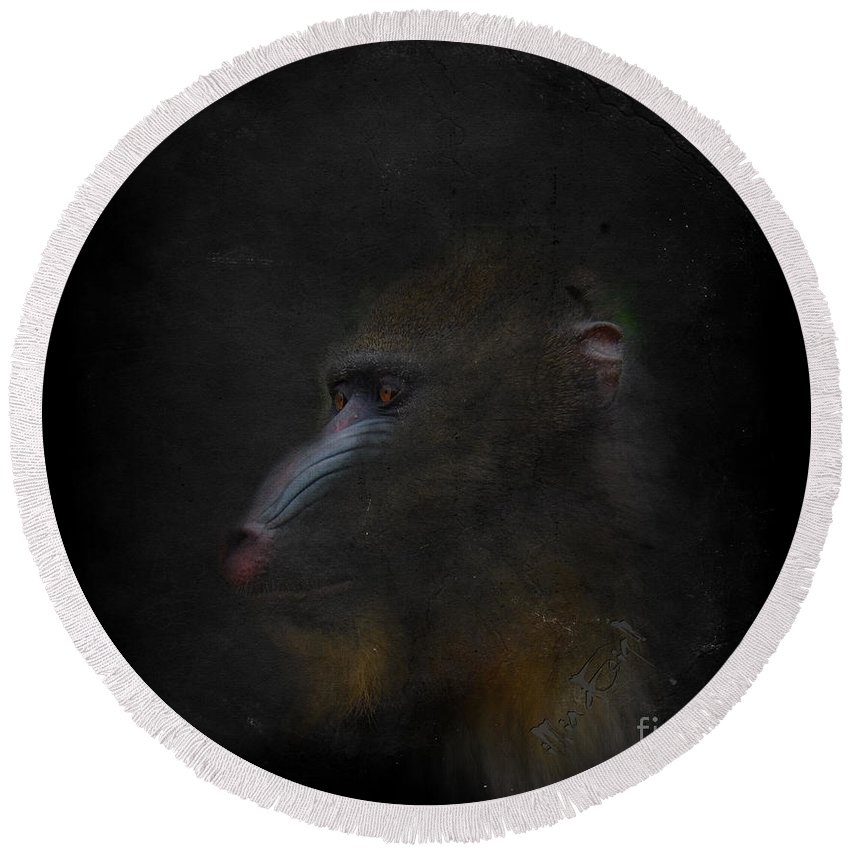 Imia Dedign Round Beach Towel featuring the digital art Beautiful Baboon by Maria Astedt