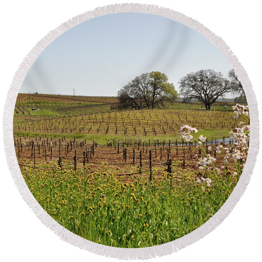 Green Round Beach Towel featuring the photograph Beautiful California Vineyard Framed With Flowers by Brandon Bourdages