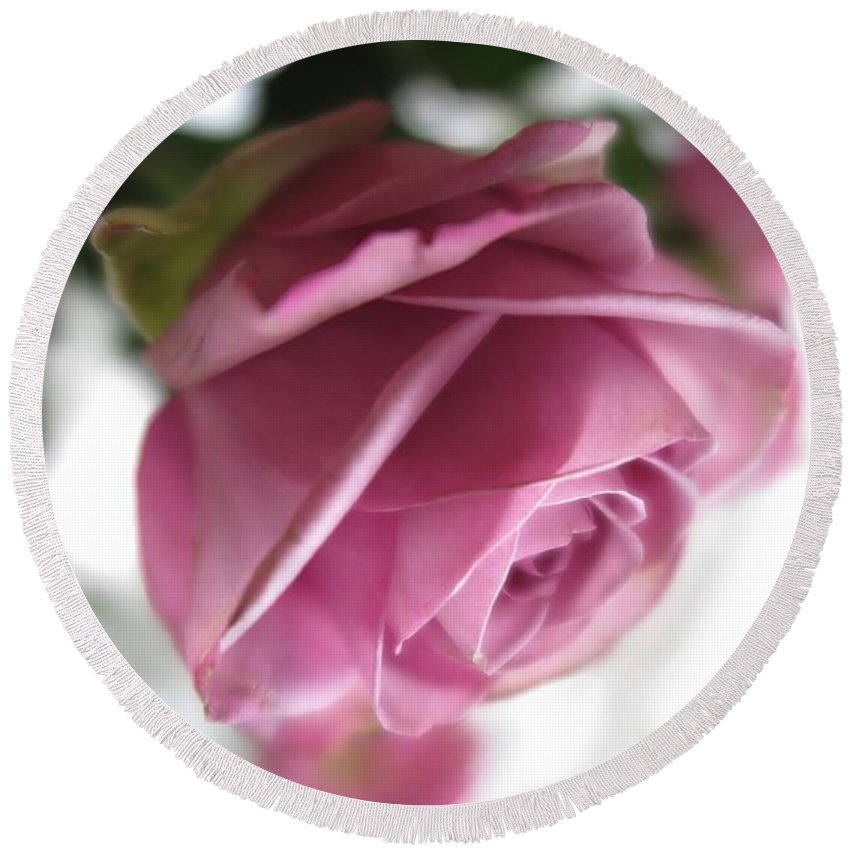 Floral Round Beach Towel featuring the photograph Beautiful Lavender Rose 2 by Tara Shalton