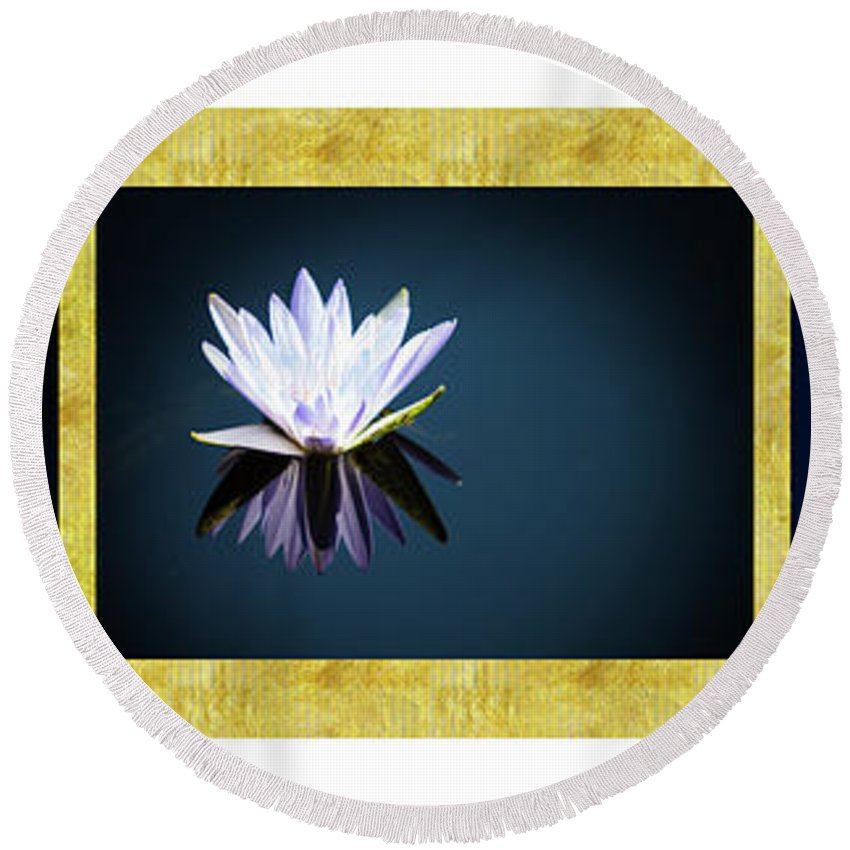 Lotus Round Beach Towel featuring the photograph Beautiful Waterlilies by Frani Smith
