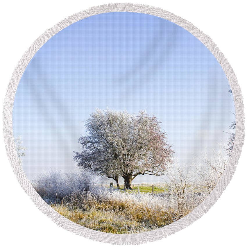 Fingal Round Beach Towel featuring the photograph Beautiful Winter Background With Snow Tipped Trees by Jorgo Photography - Wall Art Gallery