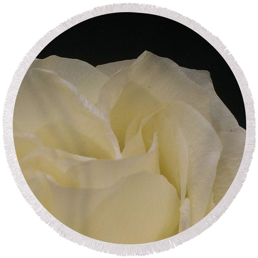Rose Round Beach Towel featuring the photograph Beauty Created by LKB Art and Photography