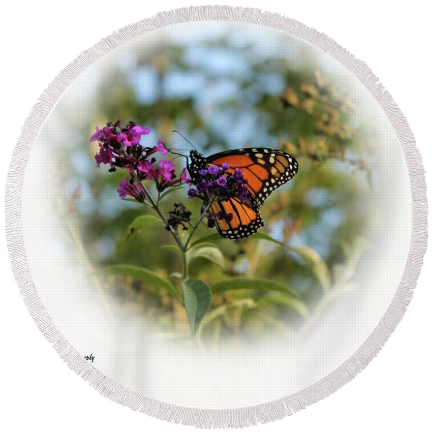 Butterfly Round Beach Towel featuring the photograph Beauty In God's Handiwork 2 by Robin Ayers