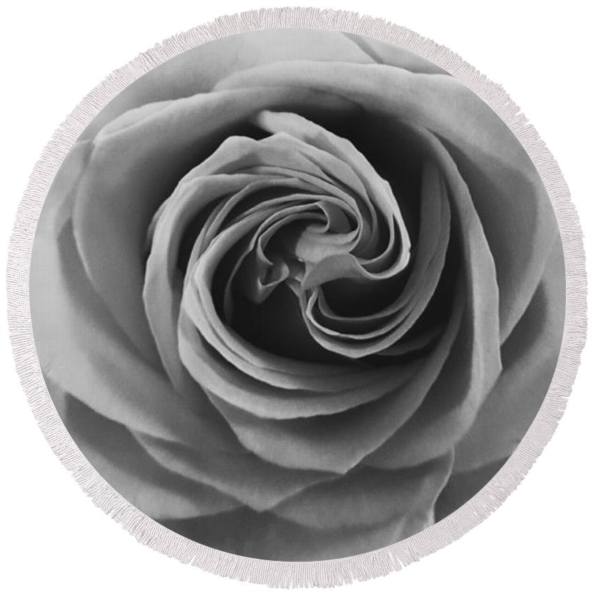 Rose Round Beach Towel featuring the photograph Beauty Of The Rose Ill by Neal Alicakos