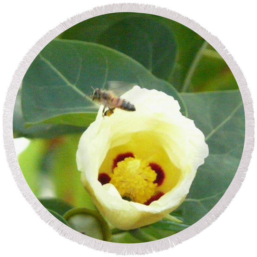 Bee Plants Tropical Round Beach Towel featuring the photograph Bee Chowtime by Robert aka Bobby Ray Howle