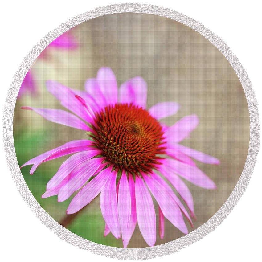Flowers Round Beach Towel featuring the photograph Bee In Motion by Sue Collura