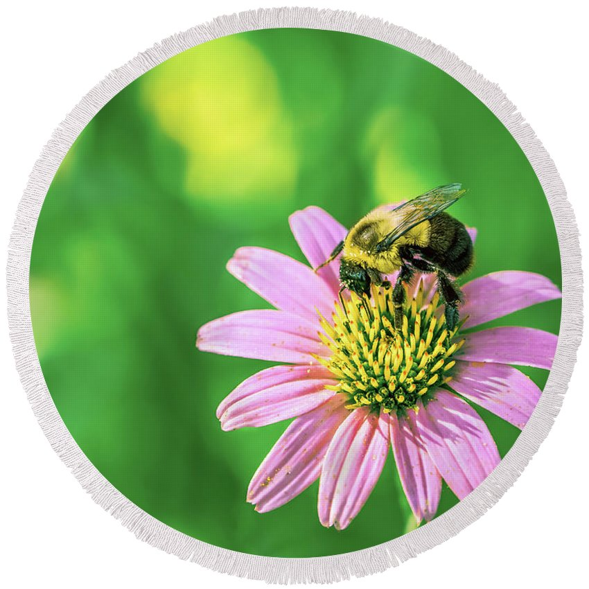 Flower Round Beach Towel featuring the photograph bee by Lijie Zhou