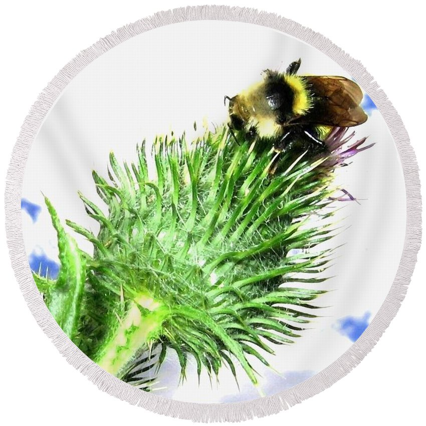 Bee Round Beach Towel featuring the photograph Bee-line 4 by Will Borden