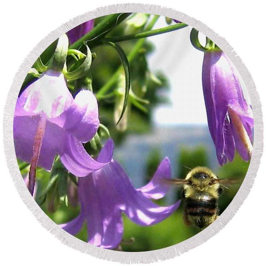 Bee Round Beach Towel featuring the photograph Bee-line 5 by Will Borden