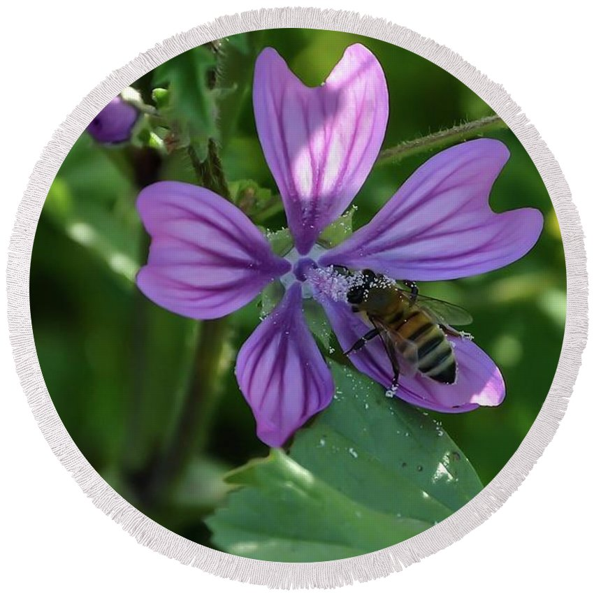 Bee Round Beach Towel featuring the photograph Bee On Flower by Michael Lazaridis