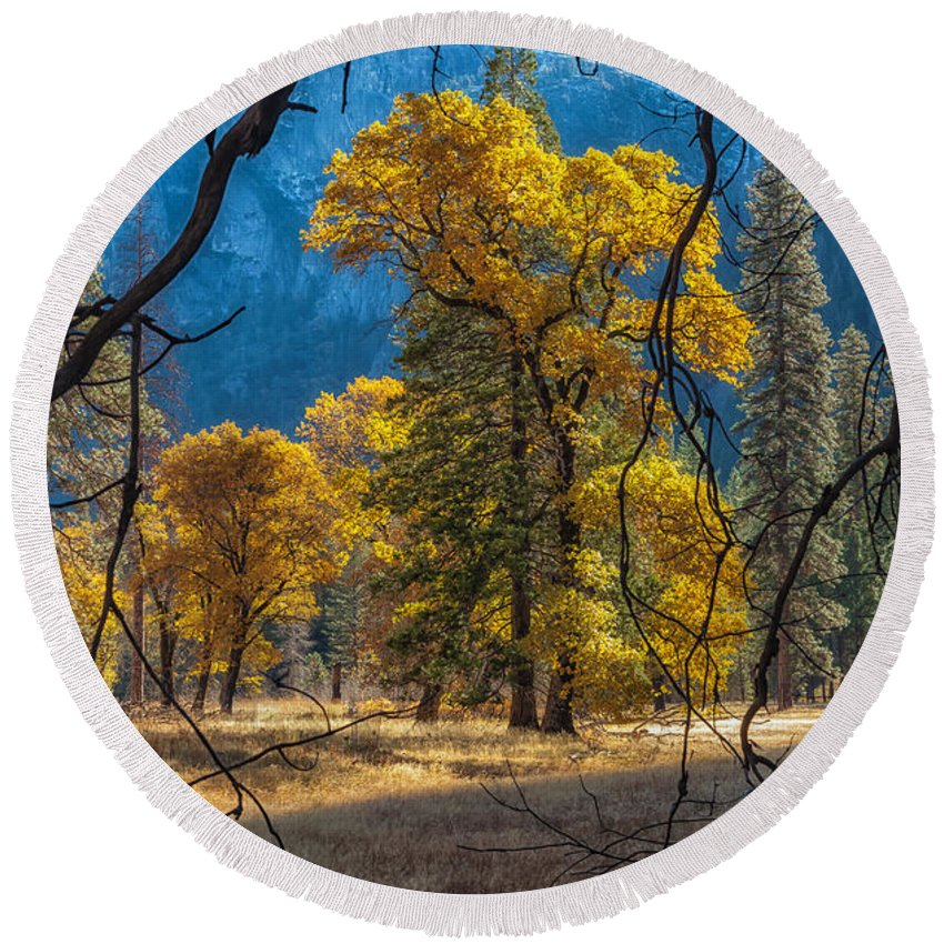 Nature Round Beach Towel featuring the photograph Behind The Branches by Jonathan Nguyen